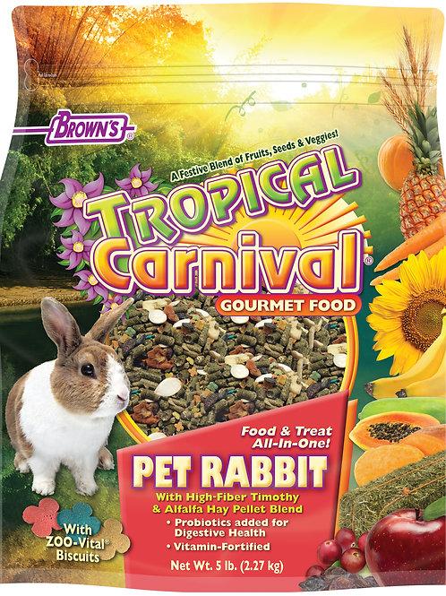 Tropical Carnival Rabbit