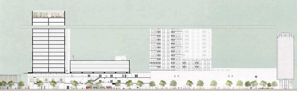 Proposed section public realm.jpg