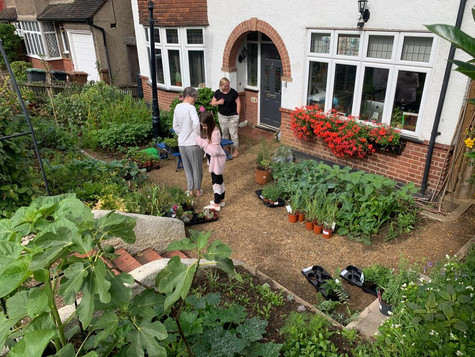 Charity Plant Sale for the Stephen Lawrence Charitable Trust