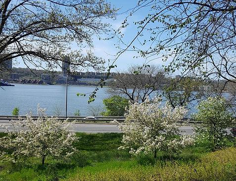 Hudson River from Riverside Park