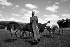 Fatima - Into the WILD