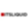 ITSLIQUID Logo.png