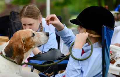 hound show.jpg