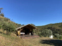 Safari tent.heic