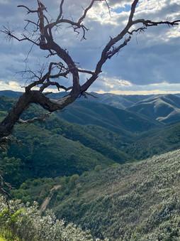 Serra de Alcaria da Cume.jpeg