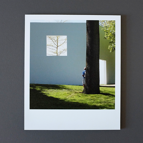 Polaroid Skulpturenpark