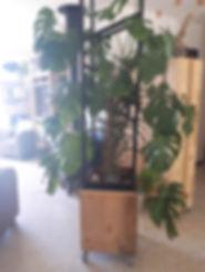 jardiniere haute.jpg