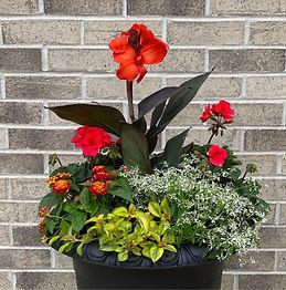 crescendo_summer_planter.jpg