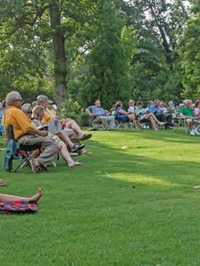 outdoor concert D people audience.jpg