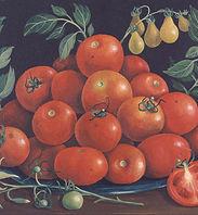 tomatoes%20dark%20001_edited.jpg
