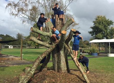 'New' Playground