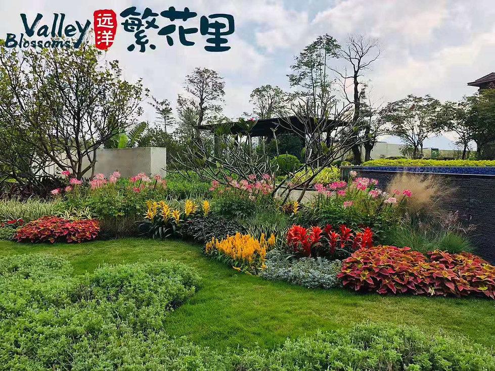 WeChat 圖片_20210623120933.jpg