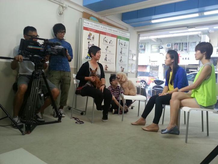 TVB 學是學非 2013