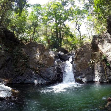 Portobello Waterfall Tour