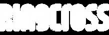 링크로스_logo_W.png