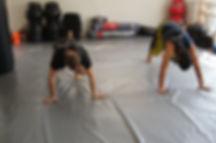 Cross fitness training peleadores profesionales Academia Predators