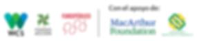logos-aliados-color.png