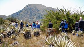 Compensaciones para fortalecer nuestro sistema de áreas protegidas
