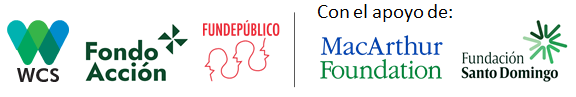 logos-aliados-color-2.png