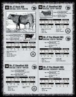 2020 Sletten Angus Catalog-20