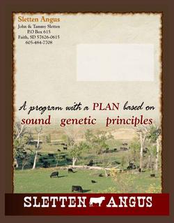 2020 Sletten Angus Catalog-32