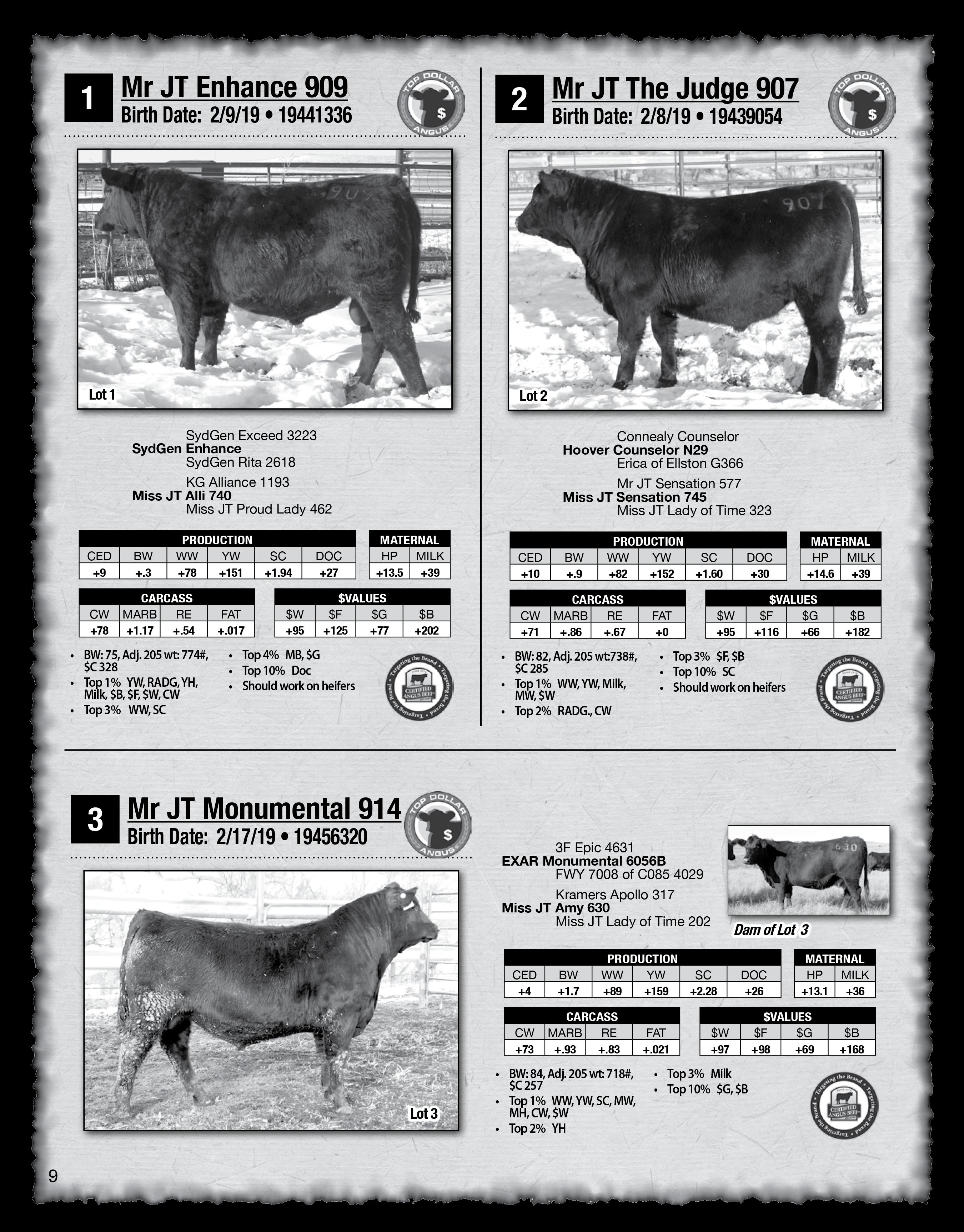 2020 Sletten Angus Catalog-9