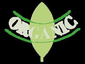 Sustainability Business Spotlight: Naturepedic Organic Mattresses