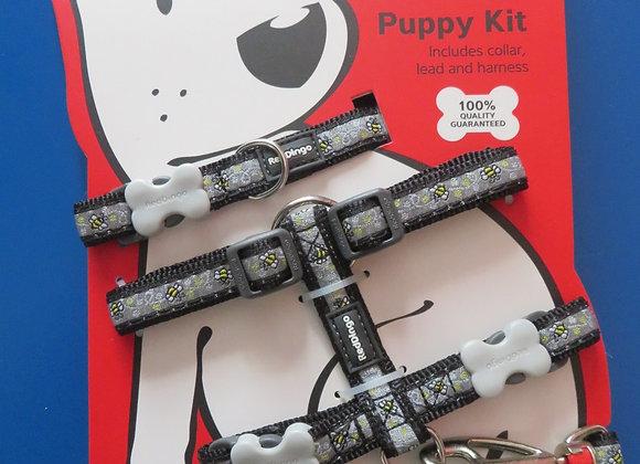 Red Dingo Puppy Pack