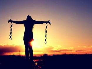 セミと視点と自由の話「それは本当?」と常識を疑い続けることがリバティへの道