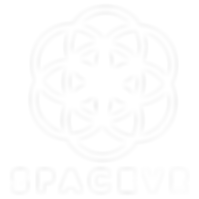 spacevr-logo-white.png