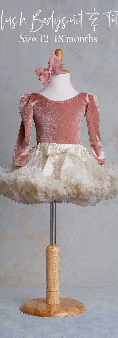 Size 12-18 months Blush Velvet Bodysuit