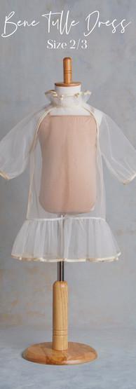 Size 2-3 Bene Bene Tulle Dress.jpg