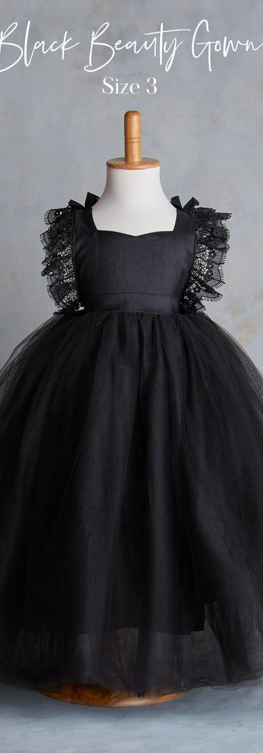 Size 3 Black Beauty Gown.jpg