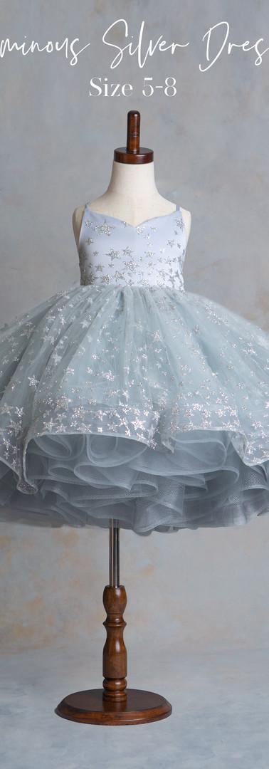 Size 5-8 Luminous Silver Dress.jpg