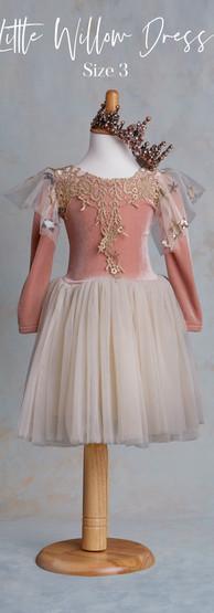 Size 3 Little Willow Dress.jpg