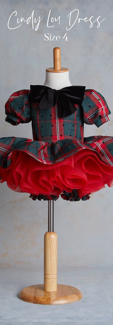 Size 4 Cindy Lou Christmas Dress with Bl