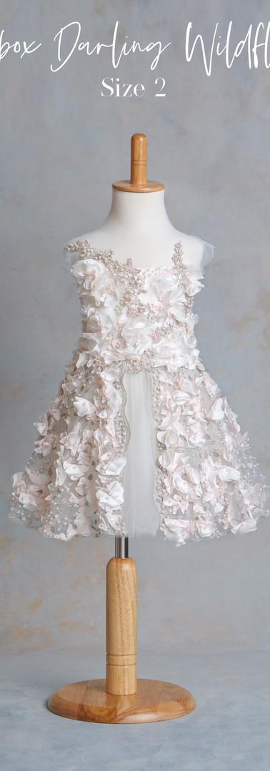 Size 2 Soapbox Darling Wildflower Dress.
