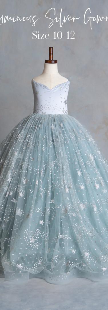Size 10-12 Luminous Silver Gown.jpg