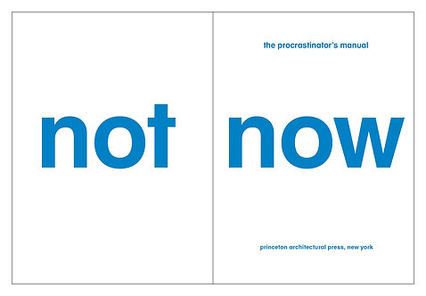 NOT NOW THE PROCRASTINATOR'S PLAYBOOK /ANGLAIS