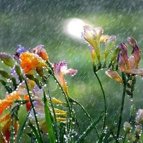 C'è pioggia e pioggia... per saper esistere