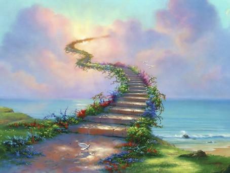 La colonna vertebrale: una simbologia verso il Cielo