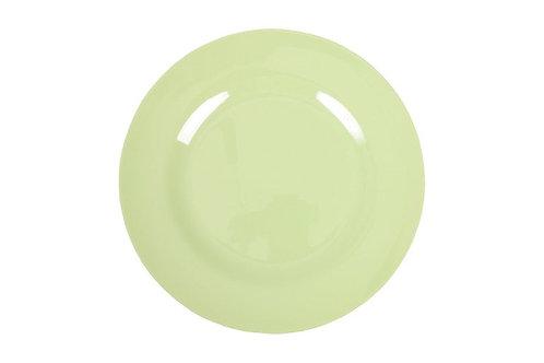 צלחת מלמין מנה ראשונה ירוק מנטה