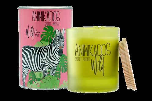 Animikados Wild נר Zebra