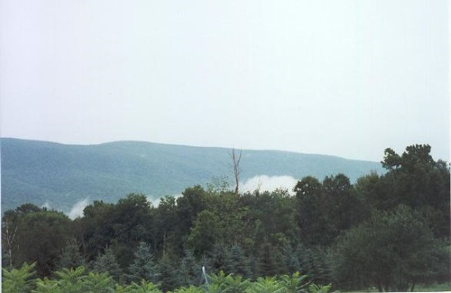 the Green Mountains in Vermont with trees and fog