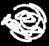 ACES Air-To-Air Flight Logo