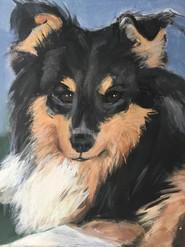 Hond 40x50.jpg