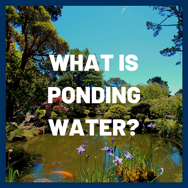 Managing ponding water is vital to properly maintaining and extending the life of your roof.