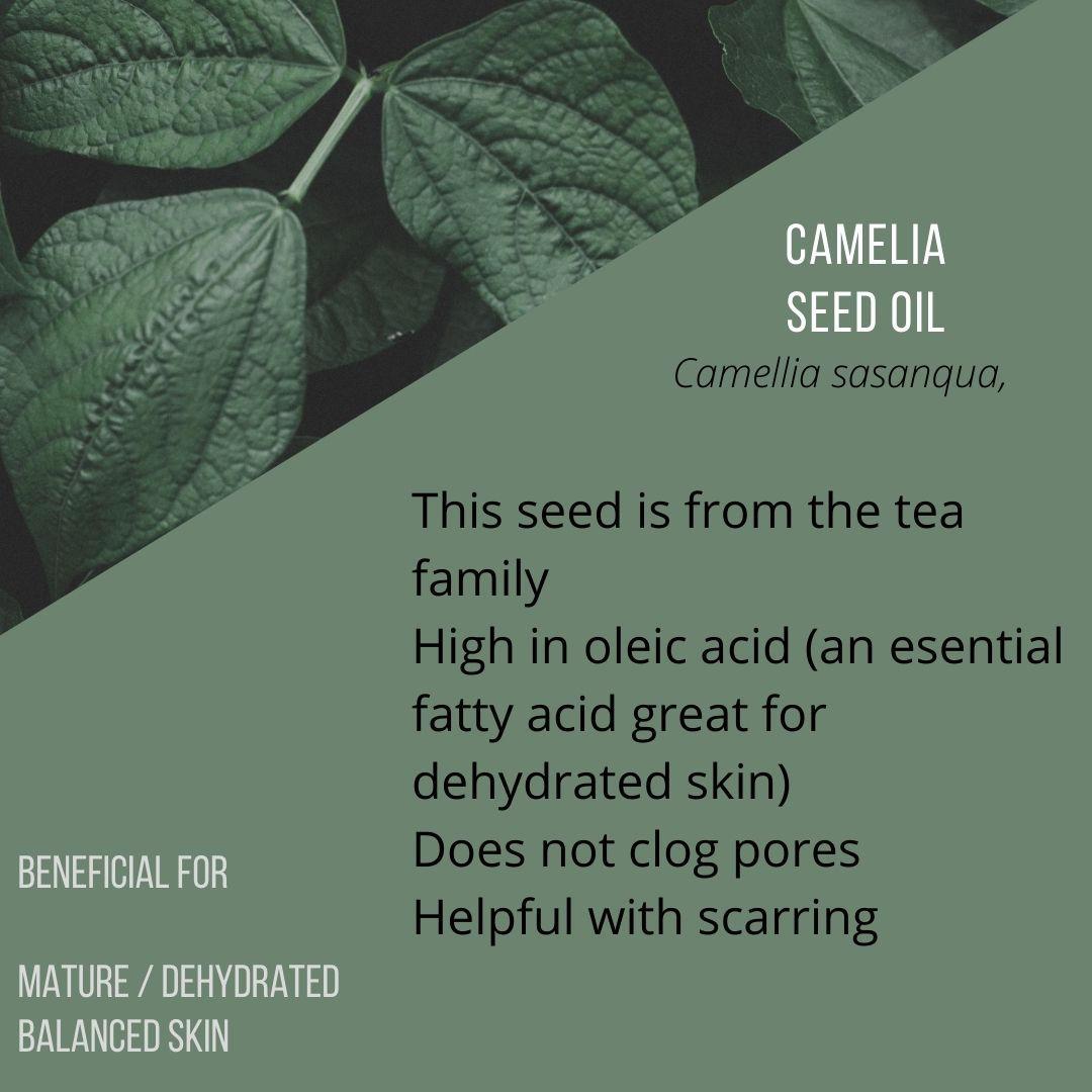 camelia oil.jpg
