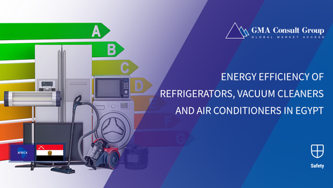 Energy Efficiency of Refrigerators, Vacuum Cleaners and Air Conditioners in Egypt