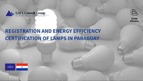Registration and Energy Efficiency Certification of Lamps in Paraguay